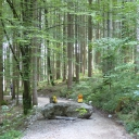 20150909_095308_Bodensee-Königssee-Radweg Thomas