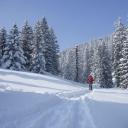 20100213_124956_Schneeschuhwanderung_Chiemgau_T