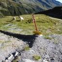 20190904_090924_Stubaier-Höhenweg-Heike