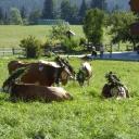20180908_161456_Dolomiten-Radtour-Thomas